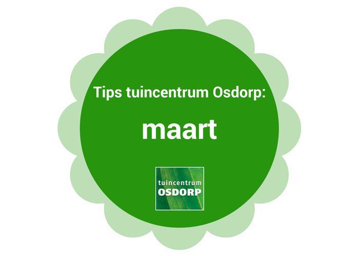 De tuintips en interieurtips van maart bij tuincentrum Osdorp Amsterdam