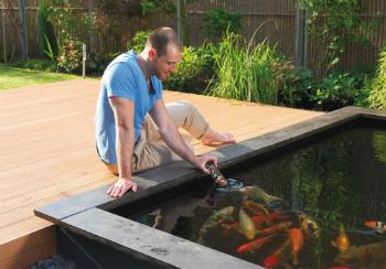 Vijver advies bij tuincentrum Osdorp in Amsterdam